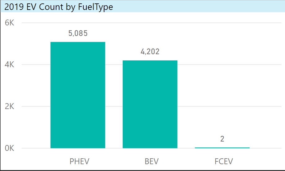 2019 EV Count By Fuel Type