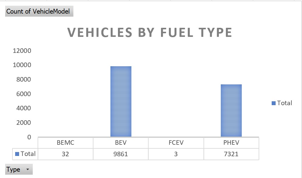 Electric Vehicles by Fuel Type